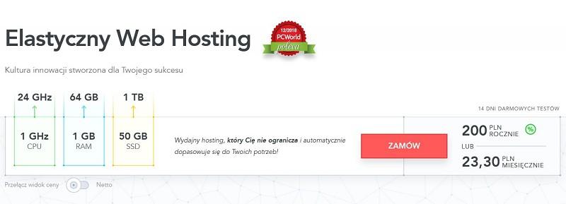 Elastyczny Web Hosting